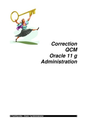 what is oracle db administration pdf