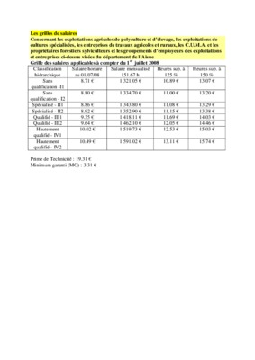 Grilles salaires notice manuel d 39 utilisation - Grille des salaires syndeac ...