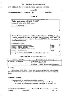 Corrige examen bp notice manuel d 39 utilisation for Business plan salon de coiffure pdf